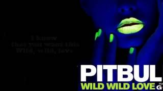Pitbull Ft G R L Wild Wild Love Lyrics