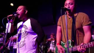 The Full Pledge Munkees - Appreciate You (new song!) (Live at The Substation)