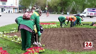 В Нефтекамске высадят более 100 000 цветов