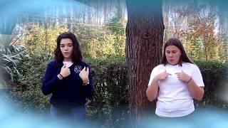 Saludo a la Bandera en lenguaje de señas IMA TW CH 2017