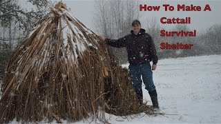 How to make a Weatherproof Cattail Shelter. Primitive Bushcraft Survival Skills