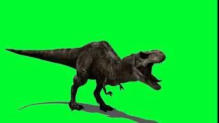 Green screen effect dragon