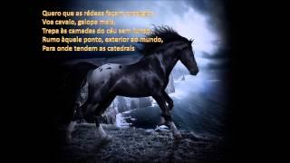 Frei Hermano da Câmara - Quero um cavalo de várias cores