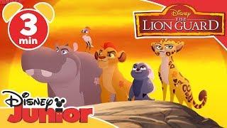 Magical Moments | The Lion Guard: Frenemies | Disney Junior UK