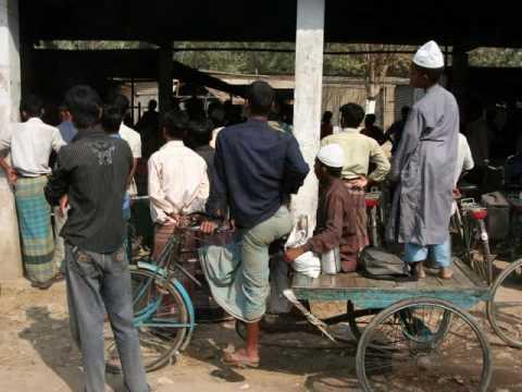 krokus 2010 in Bangladesh
