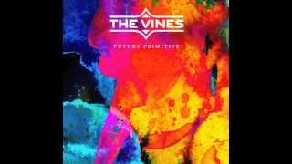 The Vines   I Bet You Look Good On The Dance Floor (Arctic Monkeys Cover)