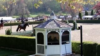 PIRELLI  ||  Old Salem Farm  ||  Winning Under Saddle