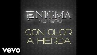 Enigma Norteño - Con Olor A Hierba (Audio/En Vivo)