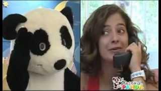 Festival Panda 2008 - Conferência Imprensa