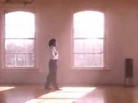 stevie-b-because-i-love-you-the-postman-song-vikaash-mahabir