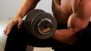 How to Do a Concentration Curl   Arm Workout
