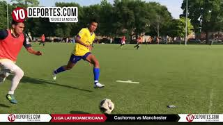 Cachorros vs. Manchester Liga Latinoamericana Sábado