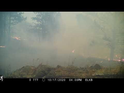 Cameron Peak Fire Timelapse from Bobcat Ridge Natural Area's Mahoney Park