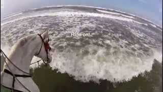 Riding Apollo, my blind horse, into the Pacific Ocean