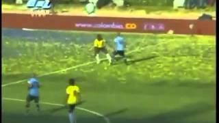 Gol   Cali  Dandee (Seleccion Colombia)