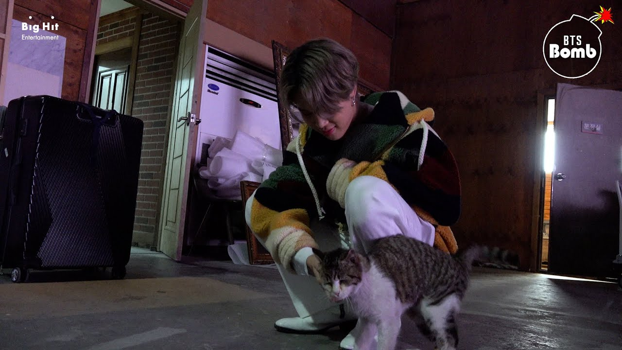 BTS - [BANGTAN BOMB] You Have a Meow-sitor! - BTS (방탄소년단)