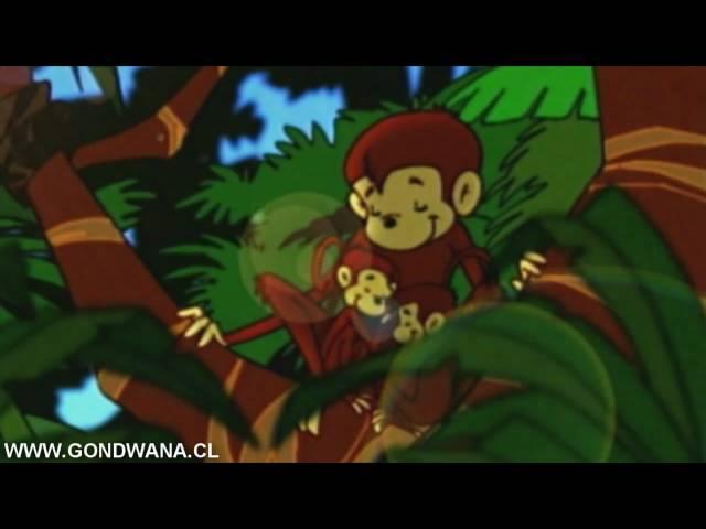 Vídeo de la canción Felicidad de Gondwana