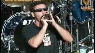 Needles- System of a down (Live)