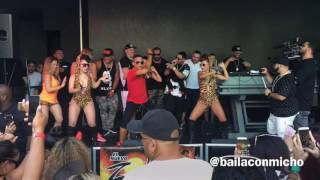 Shake Shake Daddy Yankee en vivo
