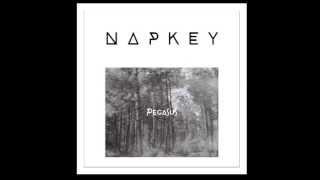 Napkey - Pegasus