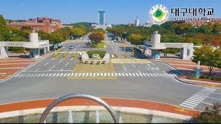 (대구대학교) 입학처 정시모집 전광판 광고 영상