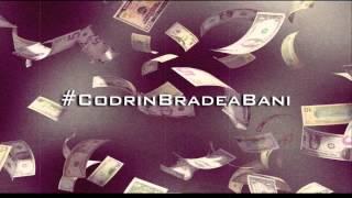 David H - #CodrinBradeaBani (REMIX)