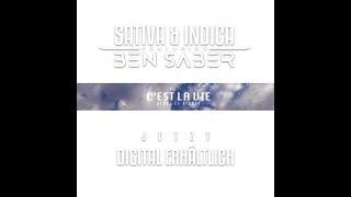 SATIVA & INDICA feat. BEN SABER - C'EST LA VIE prod. by Vienca (OFFICIAL 4K VIDEO)