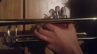 Despacito con trompeta 🎶🎺