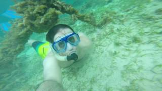 Negril Snorkeling GoPro Video