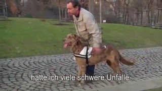 Blindenhunde | Vodící psi