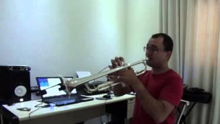 Like I'm Gonna Lose You - Meghan Trainor ft John Legend - Trumpet Cover