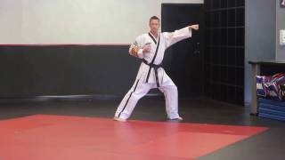 In Wha 2 (Full Form) - Schafer's ATA Martial Arts
