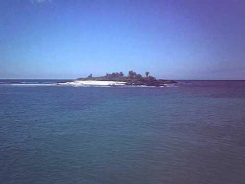 Ecuador   Galapagos   Sea Lion Floriana part 13