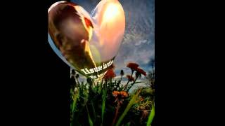 Axel Rudi Pell -The Nature,s Heart (Instrumental)