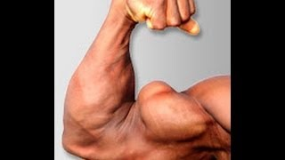 Making Your Biceps GROW - Spider Curls