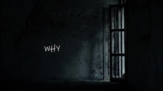 NF // WHY Lyric Video