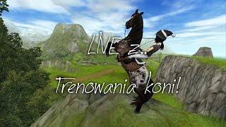 SSO| Zapowiedź LIVE o 16:00| 27.01.17r.| Trenowanie koni
