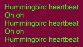 Hummingbird Heartbeat by Katy Perry with lyrics on screen