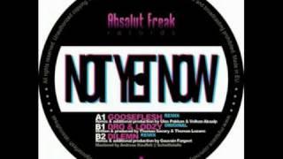 Lodzy Dro - Not Yet Now (Original Mix)