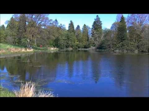 Loch View Park: The Loch