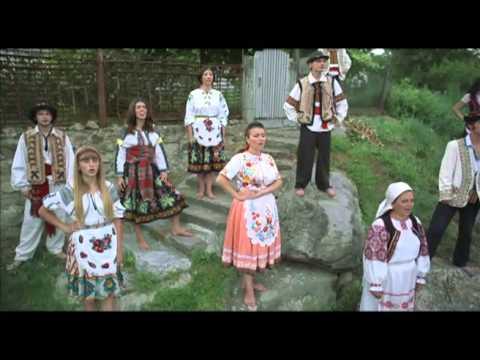Ukraine is home to 156 thousand Ukrainian Hungarians