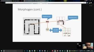 Morphozoic Tutorial, OpenWorm Open House, October 25, 2016