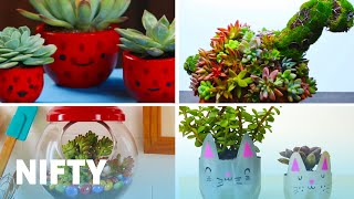 9 Planting Projects to Brighten Up Your House
