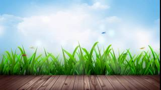 Free HD Wedding background, Free download motion background, Free Video animation NATURE 014