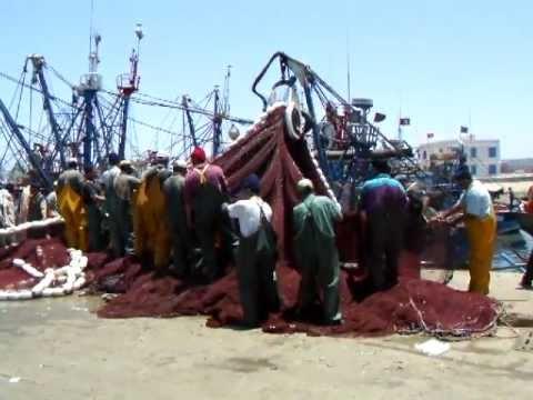 Essaouira Fisherman, Morocco