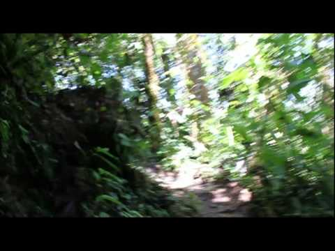 Adventures In Mindo
