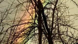 Spring 2010 Rainbow