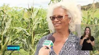 Agricultores recebem capacitação da Conab para fornecer alimentos pelo PAA