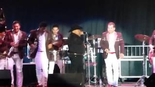 El Coyote Y Su Banda - En Vivo - Y Que Paso.