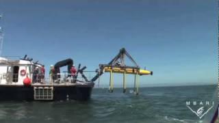Autonomous Underwater Vehicle with Gulper Samplers